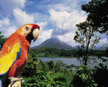 relocation to costa rica